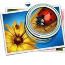 PhotoZoom Classic 7v7.1.0